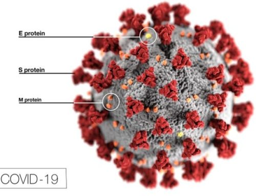 Hinweise zum CORONA Virus